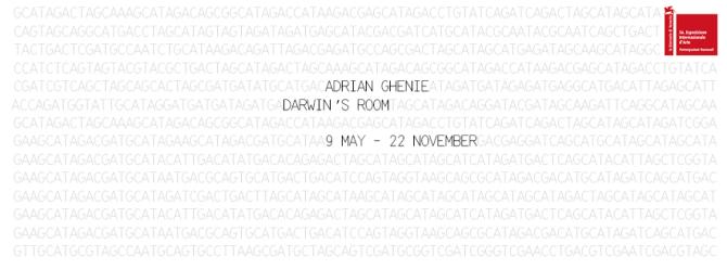 Darwin'sRoom
