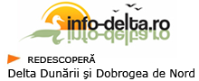 info_delta
